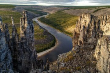 Taimyr ecology to be studied