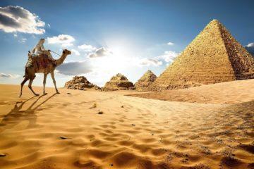 Egypt. Mahmoud Maher