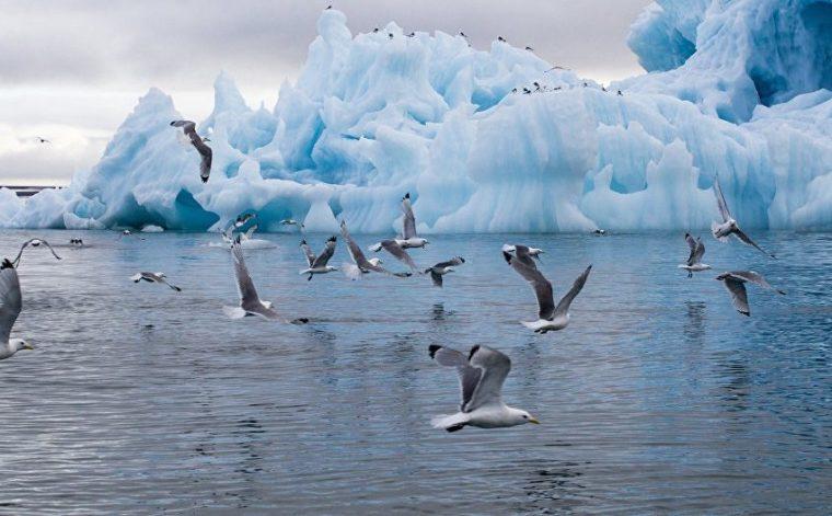 Arctic atmosphere studied