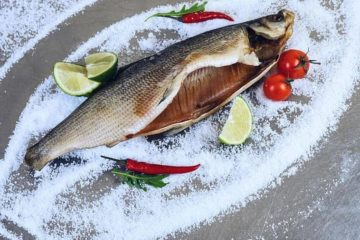 Taimyr whitefish participates in competition
