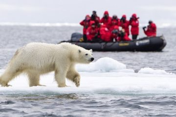 Investors to develop tourism in the Arctic