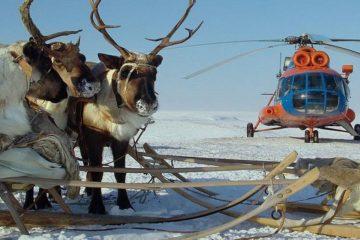 Reindeer herders' children to meet new year in tundra