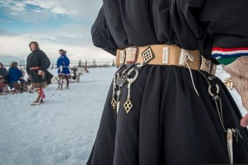 Samoyed belts come back from the past