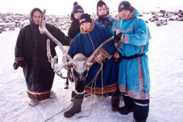 Most skillfull people to be chosen in Taimyr
