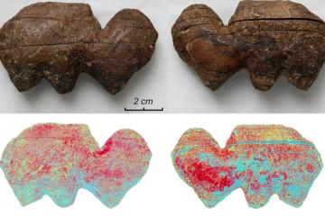 Unique mammoths figurines found