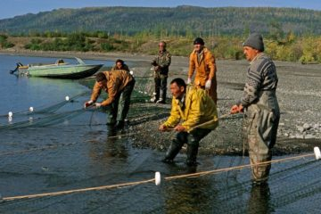 Northerners allowed to fish with nets