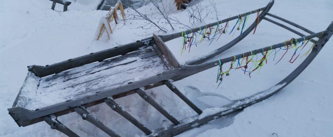 Indigenous transport does not harm tundra