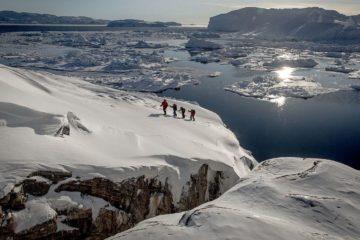 Prehistoric moss remnants found under ice in Arctic