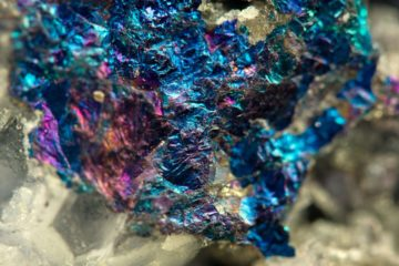 Scientists found the way of extracting rare metals