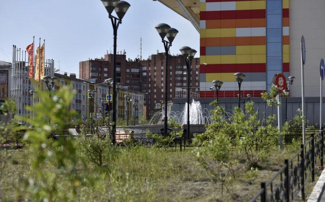 Norilsk residents to be taught land art