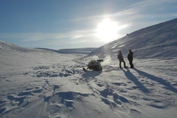 Global warming activates viruses in Arctic