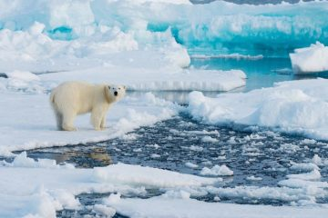 Arctic and Antarctic sea ice growing rapidly