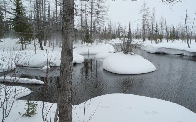 By 2050, Arctic warming damage can reach seven trillion rubles